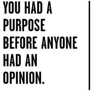 Purpose vs Opinion
